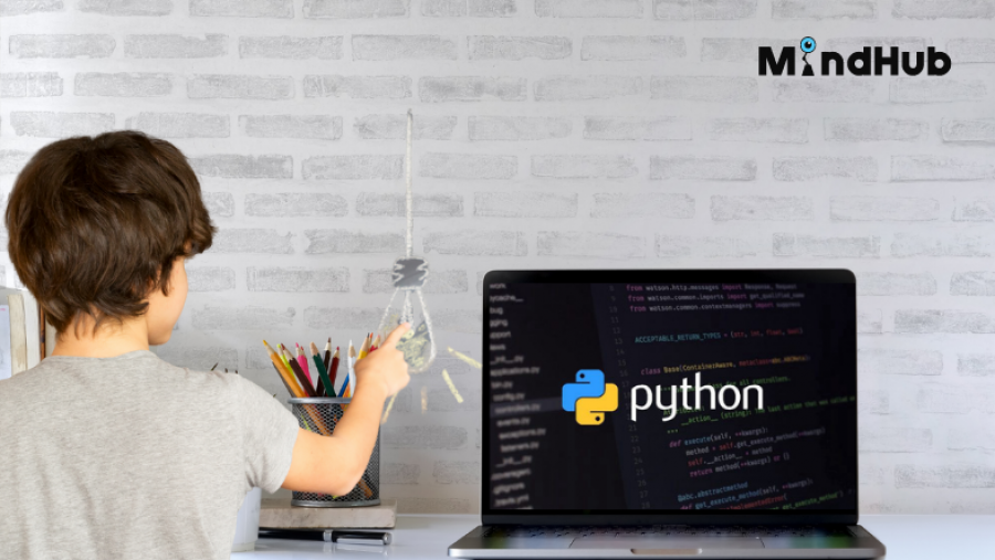 Защо Python е един от най-подходящите програмни езици за деца?